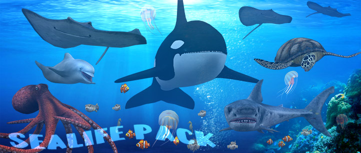 sealife ocean creatures 3d animated lowpoly pack orca shark turtle sheahorse pufferfish jellyfish clownfish stingray octopus